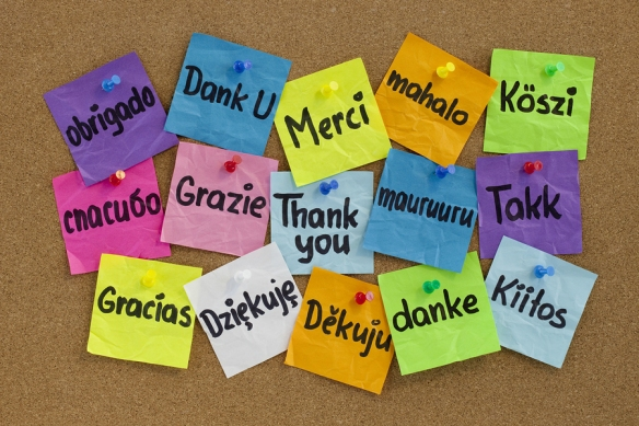 Thank you post-it notes in many different languages.